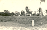 The sparsely populated D Road, Loxahatchee, 1956.