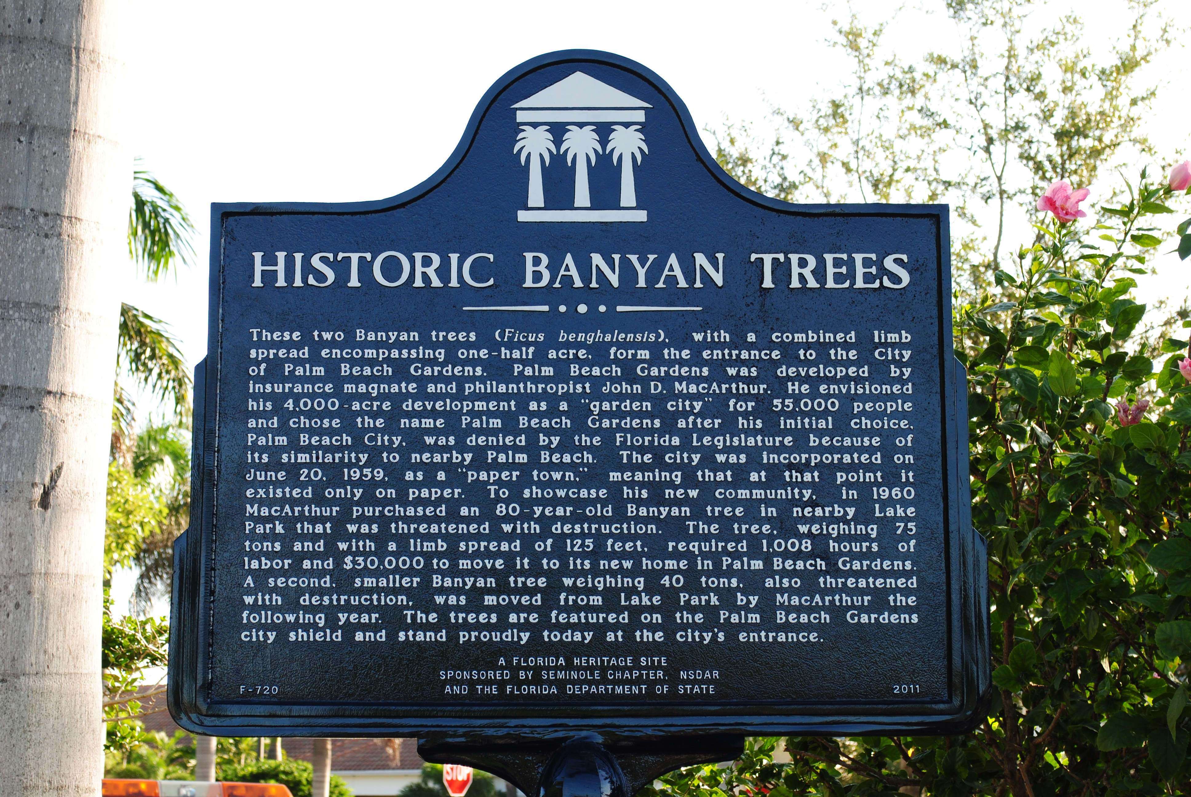 Palm Beach Gardens. Historic Banyan Trees · Old Dade County Court House