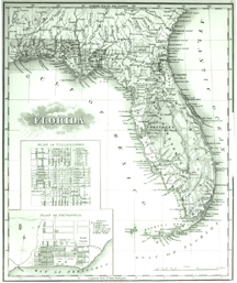 Florida with an insert of Pensacola and Tallahassee